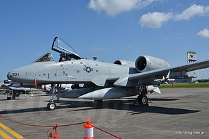 A-10 Thunderbolt II (OS 79-0201) - 横田基地日米友好祭 2015 の米軍機